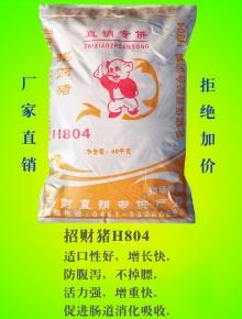 招财猪H804