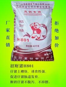 招财猪H801