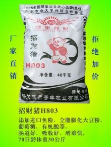 招财猪H803