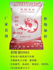 招财猪H802
